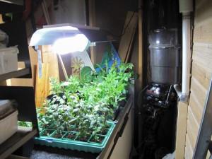 Ny lampe i ytterboden